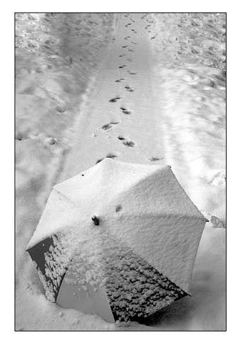 http://nasima60.persiangig.com/image/Barf-Snow-86.jpg